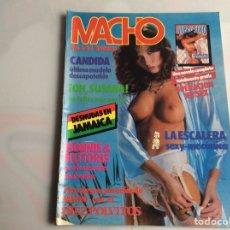 Coleccionismo de Revistas y Periódicos: MACHO VOL 6 Nº 63 REVISTA EROTICA DE AÑOS 80. Lote 129643623