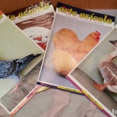 Coleccionismo de Revistas y Periódicos: REVISTAS DE ARTE AVÍCOLA. 4 EJEMPLARES AÑOS PASADOS. BUEN ESTADO GENERAL.. Lote 133097922