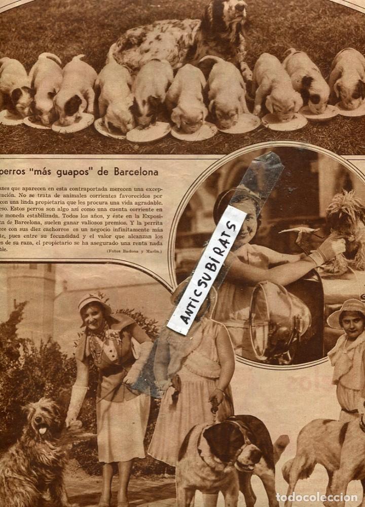 REVISTA AÑO 1931 PERROS DE BARCELONA BLASCO IBAÑEZ JOAQUIN SOROLLA PELEAS DE CARNEROS EN PAIS VASCO (Coleccionismo - Revistas y Periódicos Antiguos (hasta 1.939))