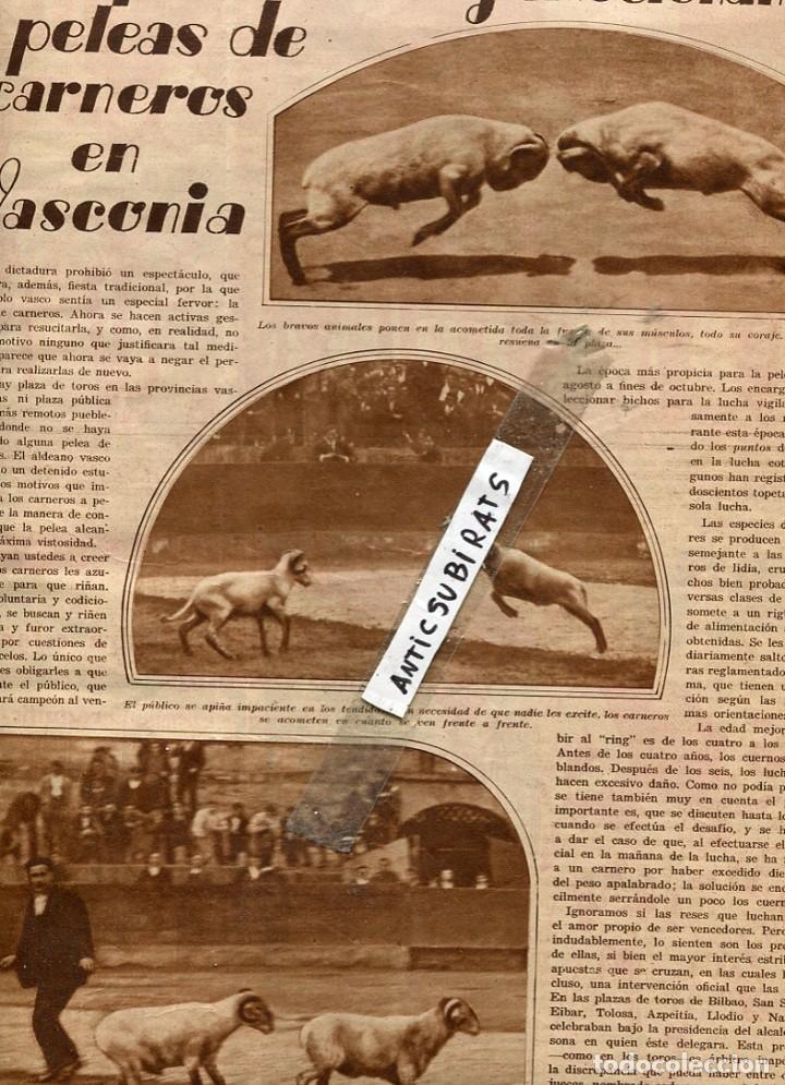 Coleccionismo de Revistas y Periódicos: REVISTA AÑO 1931 PERROS DE BARCELONA BLASCO IBAÑEZ JOAQUIN SOROLLA PELEAS DE CARNEROS EN PAIS VASCO - Foto 3 - 133144378