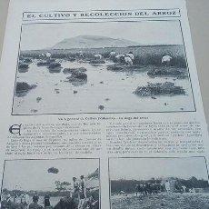 Coleccionismo de Revistas y Periódicos: HOJAS REVISTA AÑO 1906 FOTOS CULTIVO Y RECOLECCION DEL ARROZ CULLERA VALENCIA. Lote 140401270