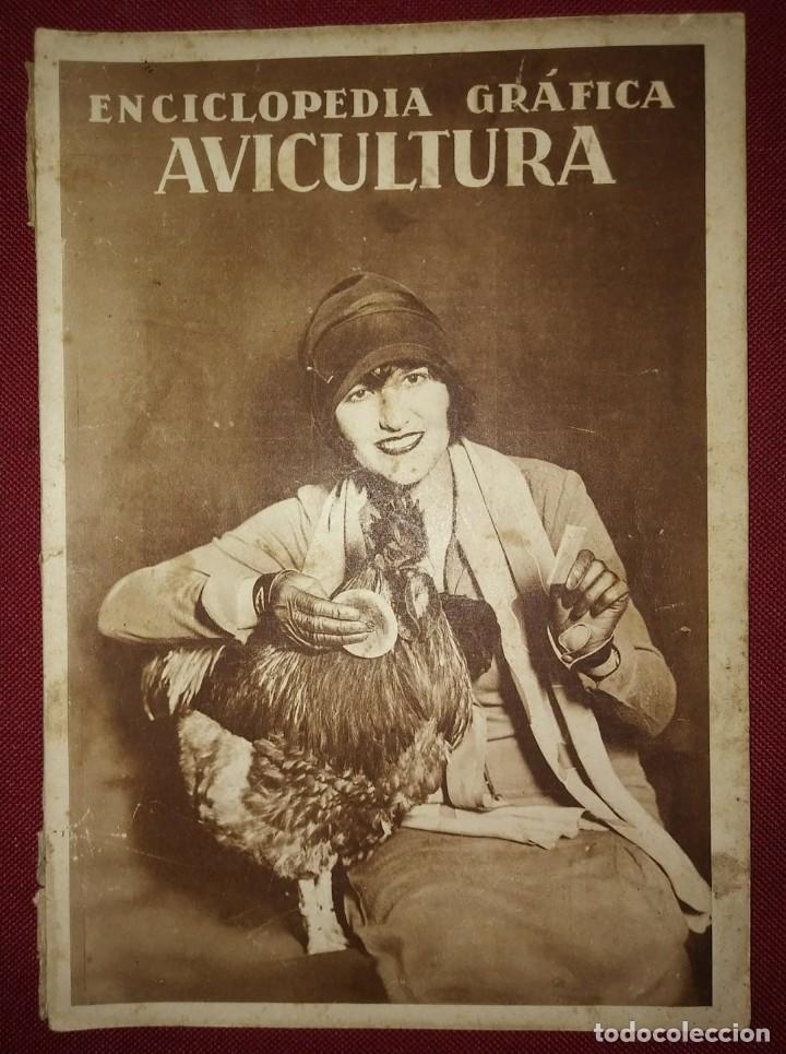 Coleccionismo de Revistas y Periódicos: AVICULTURA ENCICLOPEDIA GRÁFICA - MACARIO GOLFERICHS-LUIS G. MANEGAT - BARCELONA 1930 - Foto 2 - 116425483