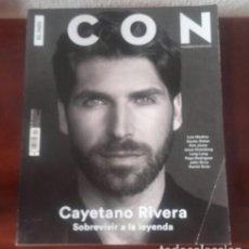 Coleccionismo de Revistas y Periódicos: ICON. Lote 149844062
