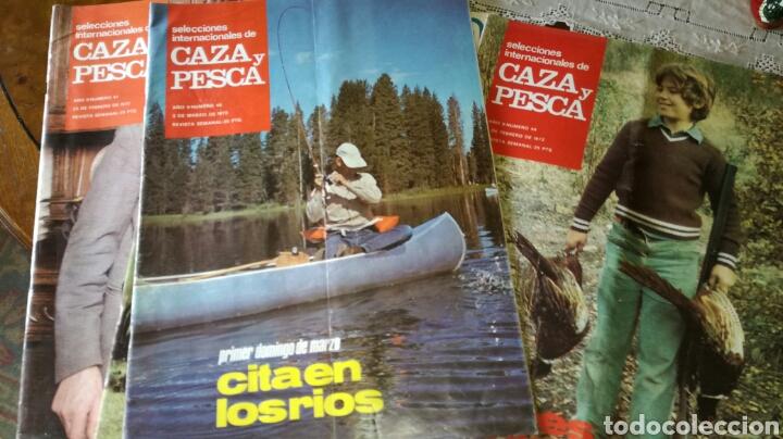 REVISTAS (Coleccionismo - Revistas y Periódicos Modernos (a partir de 1.940) - Otros)