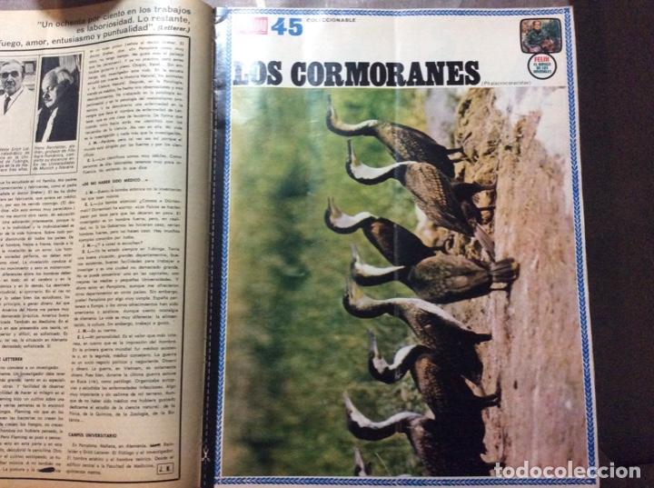 LA ACTUALIDAD ESPAÑOLA #FÉLIX RODRÍGUEZ DE LA FUENTE# 6/02/1969 (Coleccionismo - Revistas y Periódicos Modernos (a partir de 1.940) - Otros)