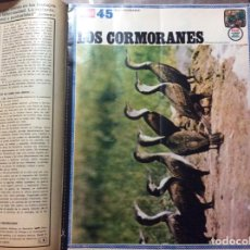 Coleccionismo de Revistas y Periódicos: LA ACTUALIDAD ESPAÑOLA #FÉLIX RODRÍGUEZ DE LA FUENTE# 6/02/1969. Lote 152495054