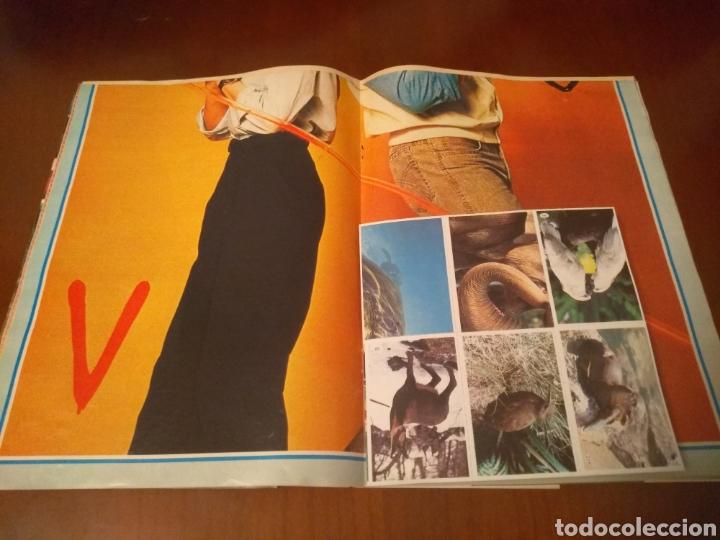 Coleccionismo de Revistas y Periódicos: Revista Tele Indiscreta n'7 sere V (completa) - Foto 11 - 181451481