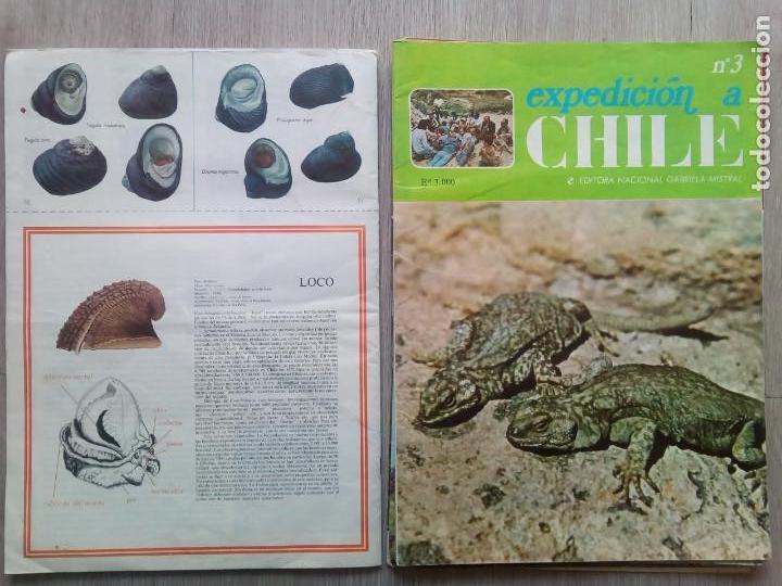Coleccionismo de Revistas y Periódicos: EXPEDICION A CHILE. Editora Nacional Gabriel Mistral. N.1 hasta 10 - Foto 3 - 155229694