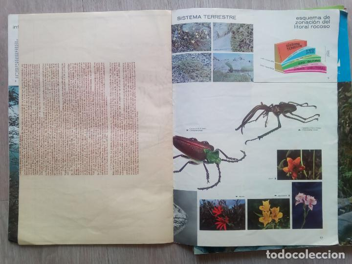 Coleccionismo de Revistas y Periódicos: EXPEDICION A CHILE. Editora Nacional Gabriel Mistral. N.1 hasta 10 - Foto 11 - 155229694