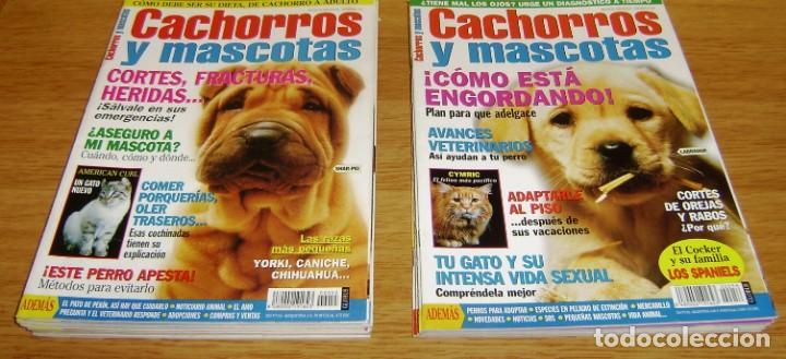 Coleccionismo de Revistas y Periódicos: 23 Revistas cachorros y mascotas. - Foto 6 - 156570446
