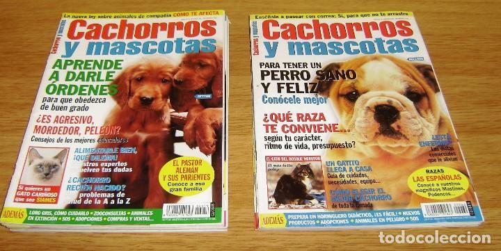 Coleccionismo de Revistas y Periódicos: 23 Revistas cachorros y mascotas. - Foto 8 - 156570446