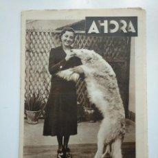 Coleccionismo de Revistas y Periódicos: DIARIO AHORA Nº 1054. 4 MAYO DE 1934. MAÑANA SE INAUGURA EXPOSICION CANINA EN EL RETIRO. CAR135. Lote 161237154