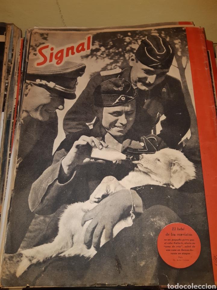 Coleccionismo de Revistas y Periódicos: Lote de 29 revistas Signal - Foto 5 - 180036168