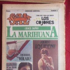 Coleccionismo de Revistas y Periódicos: REVISTA SAL COMUN Nº 13. Lote 167758296