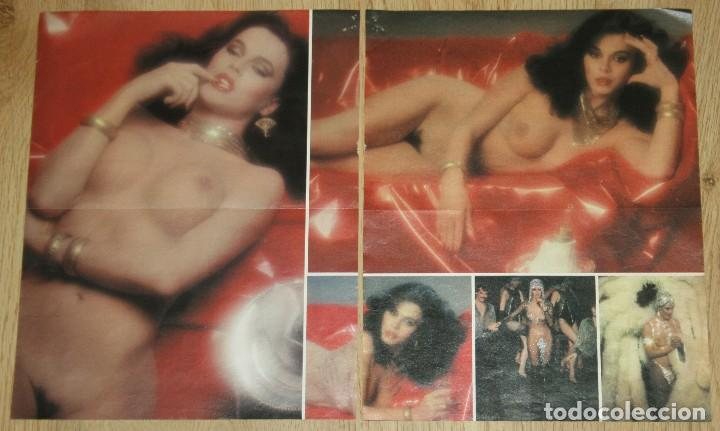 bibiana fernandez lote prensa 1970s/10s nude fotos bibi andersen clippings  trans