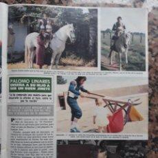 Coleccionismo de Revistas y Periódicos: PALOMO LINARES. Lote 170095616