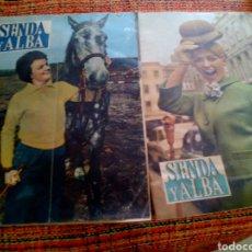 Coleccionismo de Revistas y Periódicos: LOTE REVISTA SENDA Y ALBA. Lote 170297330
