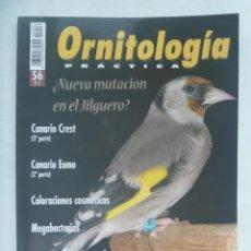 Coleccionismo de Revistas y Periódicos: ORNITOLOGIA PRACTICA . Nº 56: MUTACION EN EL JILGUERO ?, CANARIOS, PICOGORDO EN NATURALEZA, ETC. Lote 170330988