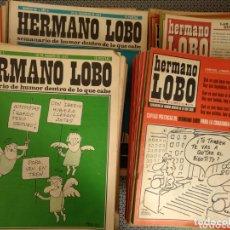 Coleccionismo de Revistas y Periódicos: LOTE 168 REVISTAS HERMANO LOBO. Lote 174033059