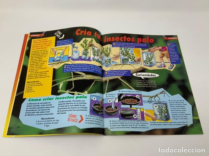 Coleccionismo de Revistas y Periódicos: BICHOS Nº 1,2,3 MAS SUPLEMENTO. PLANETA-DE AGOSTINI GAFAS 3D INCLUIDAS - Foto 8 - 174297053