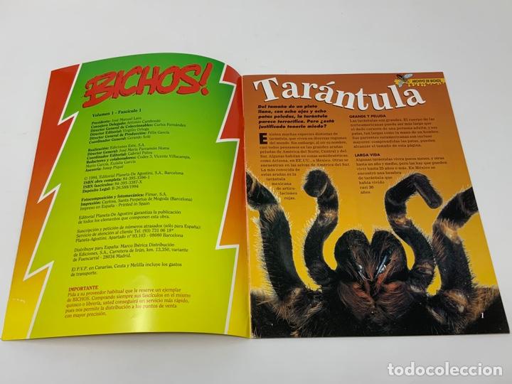 Coleccionismo de Revistas y Periódicos: BICHOS Nº 1,2,3 MAS SUPLEMENTO. PLANETA-DE AGOSTINI GAFAS 3D INCLUIDAS - Foto 14 - 174297053