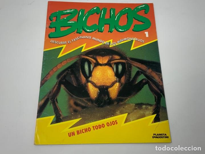 Coleccionismo de Revistas y Periódicos: BICHOS Nº 1,2,3 MAS SUPLEMENTO. PLANETA-DE AGOSTINI GAFAS 3D INCLUIDAS - Foto 2 - 174297053