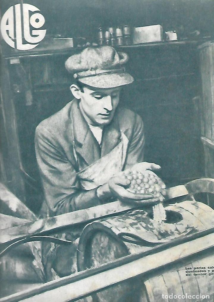 Coleccionismo de Revistas y Periódicos: AÑO 1933 MARIPOSAS VALLE DEL BAZTAN NAVARRA ESCUELA ENFERMERIA PERLAS ARTIFICIALES HALL TIROL - Foto 4 - 10121952