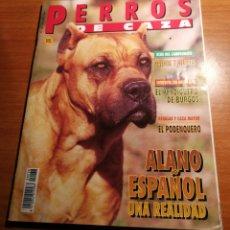 Coleccionismo de Revistas y Periódicos: PERROS DE CAZA. Lote 177766800