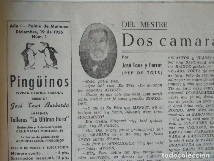 Coleccionismo de Revistas y Periódicos: REVISTA PINGÜINOS Nº1 1956 JOSE TOUS BARBERAN PEP DE TOTS FUNDADOR ULTIMA HORA MALLORCA, UNICA. - Foto 3 - 178169323