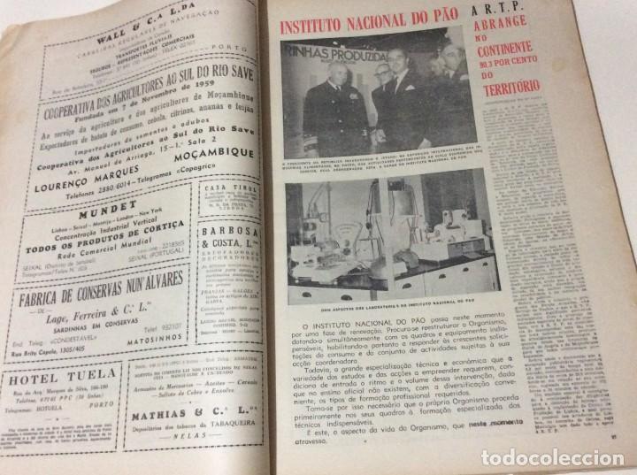 Coleccionismo de Revistas y Periódicos: Suplemento do Diario da manhã, 28 de Maio de 1967 - Foto 5 - 183822095