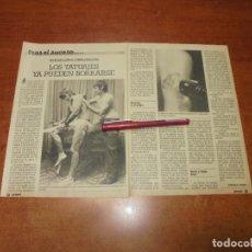 Coleccionismo de Revistas y Periódicos: CLIPPING 1986: LOS TAUTAJES YA PUEDEN BORRARSE. Lote 183869473