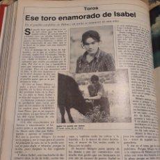 Coleccionismo de Revistas y Periódicos: EN EL PUEBLO DE CÓRDOBA DE BELMEZ UN TORITO SE ENAMORÓ DE UNA NIÑA - PAGINA AÑO 1981. Lote 184152075