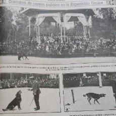 Coleccionismo de Revistas y Periódicos: CONCURSO DE PERROS POLICIA EN LA EXPOSICION CANINA DEL RETIRO MADRID HOJA AÑO 1919. Lote 184537385