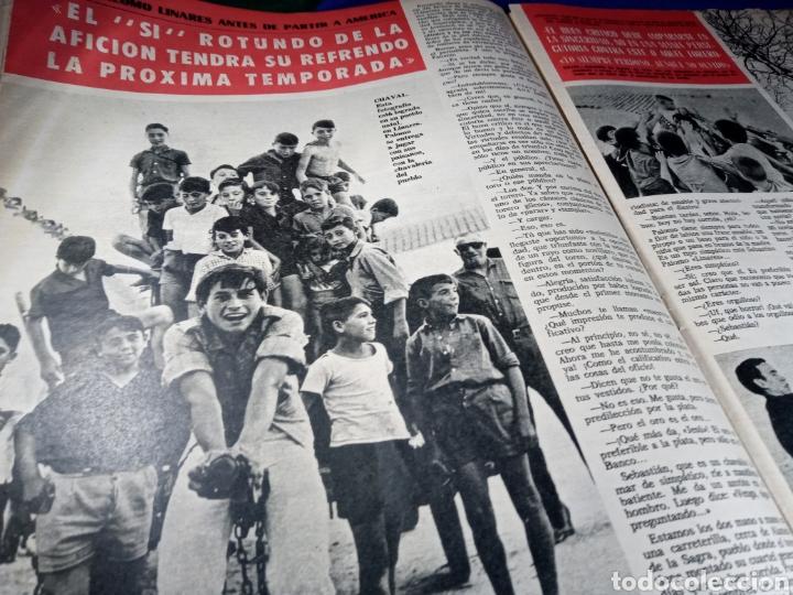 PALOMO LINARES. REVISTA EL RUEDO (Coleccionismo - Revistas y Periódicos Modernos (a partir de 1.940) - Otros)