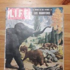 Coleccionismo de Revistas y Periódicos: LIFE EN ESPAÑOL VOL2 Nº11 23 DE NOVIEMBRE DE 1953 COLUMBINE MAMIFEROS RENAULT SABRY EISENHOWER. Lote 192005873