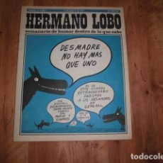 Colecionismo de Revistas e Jornais: HERMANO LOBO - Nº 13 - SEMANARIO DE HUMOR DENTRO DE LO QUE CABE. 25 PESETAS. EDITORIAL PLEYADES.. Lote 192098022