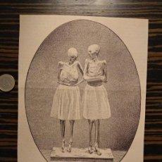 Coleccionismo de Revistas y Periódicos: GRABADO REVISTA ORIGINAL SIGLO XIX MOMIAS DIEGO MARCILLA Y ISABEL SEGURA TERUEL, LOS AMANTES. Lote 194302908