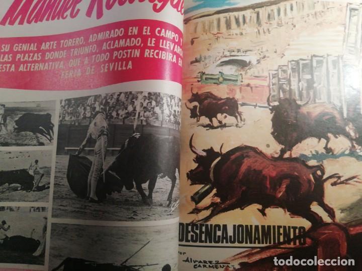 Coleccionismo de Revistas y Periódicos: DIGAME AÑO 1970 NUMERO EXTRAORDINARIO DE TOROS A COLOR GRAN FORMATO 43X29 CM - Foto 9 - 194355540