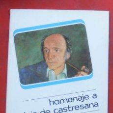 Coleccionismo de Revistas y Periódicos: TEMAS VIZCAINOS. HOMENAJE A LUIS DE CASTRESANA. Lote 194648400