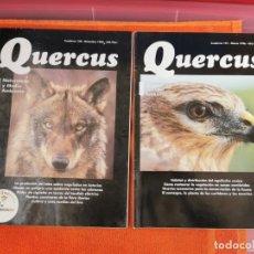 Coleccionismo de Revistas y Periódicos: REVISTAS QUERCUS NÚMEROS 130Y121 AÑO 1996. Lote 194667026
