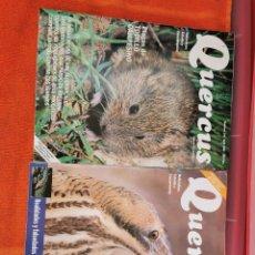Coleccionismo de Revistas y Periódicos: REVISTAS QUERCUS NÚMEROS 146Y153 AÑO 1998. Lote 194667315
