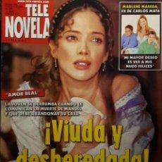 Coleccionismo de Revistas y Periódicos: TELENOVELA - NUMERO 635 - 2005 - AMOR REAL - ADELA NORIEGA - DANNA GARCIA - MACHOS - NO CORREOS. Lote 195119210