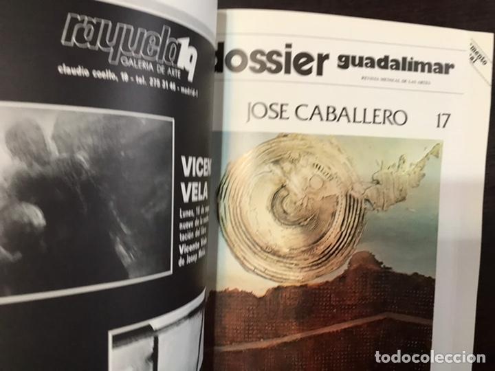 Coleccionismo de Revistas y Periódicos: Guadalimar. Revista. 16 ejemplares. Con dossier interior monográfico. - Foto 6 - 195525005
