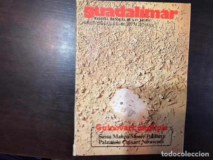 Coleccionismo de Revistas y Periódicos: Guadalimar. Revista. 16 ejemplares. Con dossier interior monográfico. - Foto 7 - 195525005