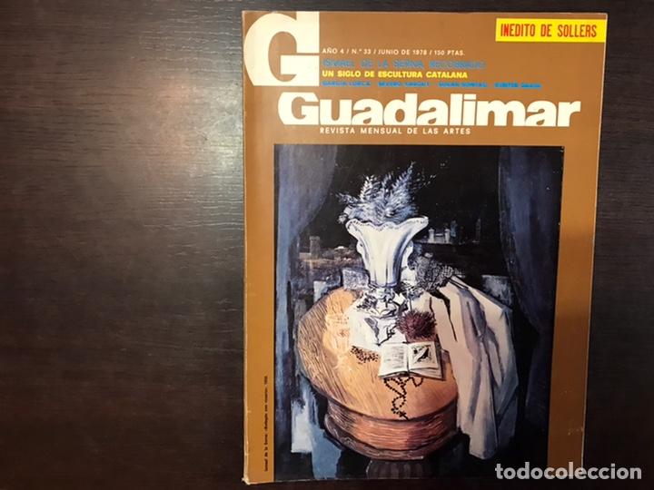 Coleccionismo de Revistas y Periódicos: Guadalimar. Revista. 16 ejemplares. Con dossier interior monográfico. - Foto 12 - 195525005