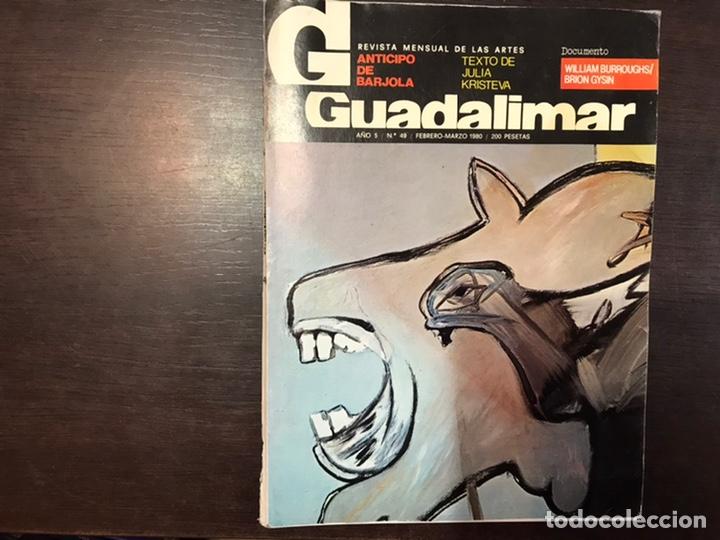 Coleccionismo de Revistas y Periódicos: Guadalimar. Revista. 16 ejemplares. Con dossier interior monográfico. - Foto 18 - 195525005