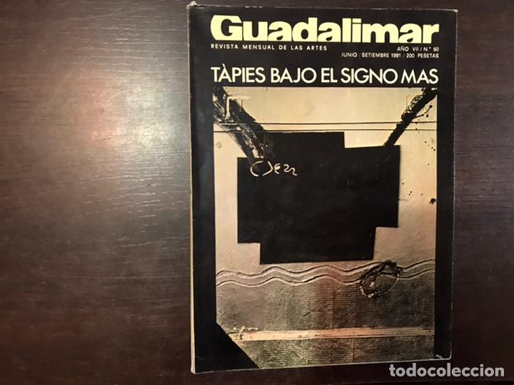 Coleccionismo de Revistas y Periódicos: Guadalimar. Revista. 16 ejemplares. Con dossier interior monográfico. - Foto 26 - 195525005