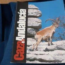 Coleccionismo de Revistas y Periódicos: REVISTA INSTITUCIONAL CAZA EN ANDALUCÍA CONSEJERÍA MEDIO AMBIENTE 32 PÁGINAS. Lote 195546668