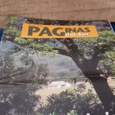 Coleccionismo de Revistas y Periódicos: REVISTA INSTITUCIONAL PÁGINAS DEL SUR N 4 1997 DOÑANA 21 NATURALEZA . Lote 195547272