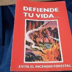 Coleccionismo de Revistas y Periódicos: CUADERNILLO INSTITUCIONAL CONTRA EL FUEGO ICONA DEFIENDE TU VIDA EVITA EL INCENDIO FORESTAL 1985. Lote 195547695
